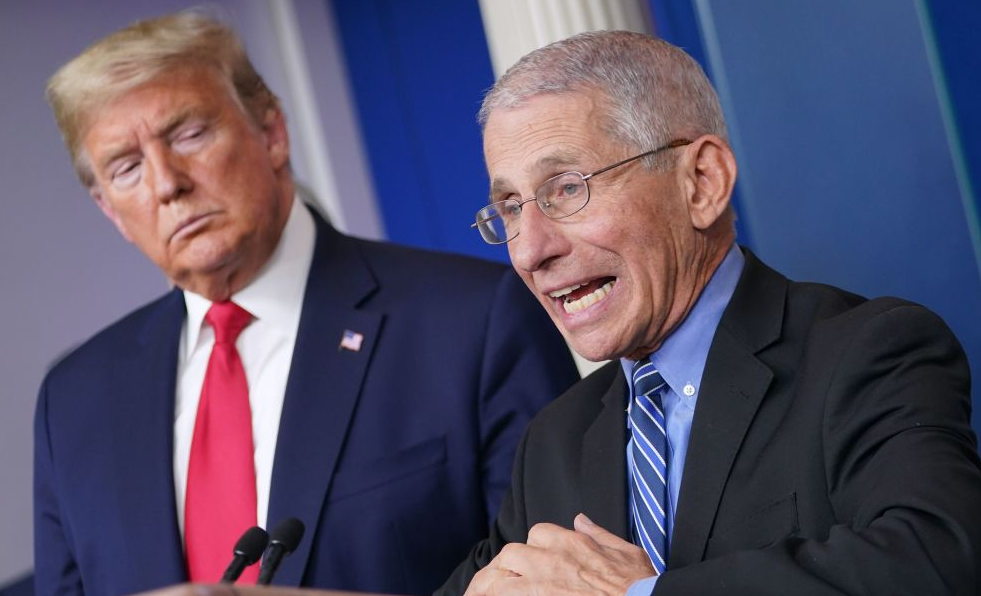 Protect Your Family from Fearmonger Fauci, by Michelle Malkin