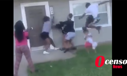 Group attacks young Mother; Her Toddler Gets a Flying Kick to the Head, what would you do?