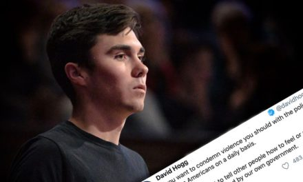 David Hogg Defends People Looting in Chicago