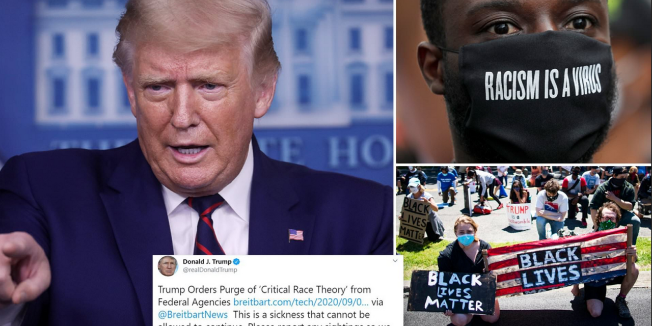 Trump's Savaging of Critical Race Theory Was the Best Point He Made in the Entire Debate