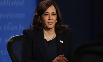 Critical swing voters in battleground state reveal why Kamala Harris helps Trump's re-election chances