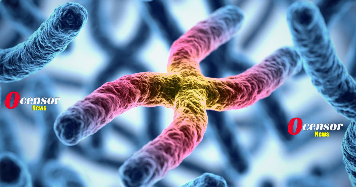 Scientists Biologically Reverse Human Aging For The First Time