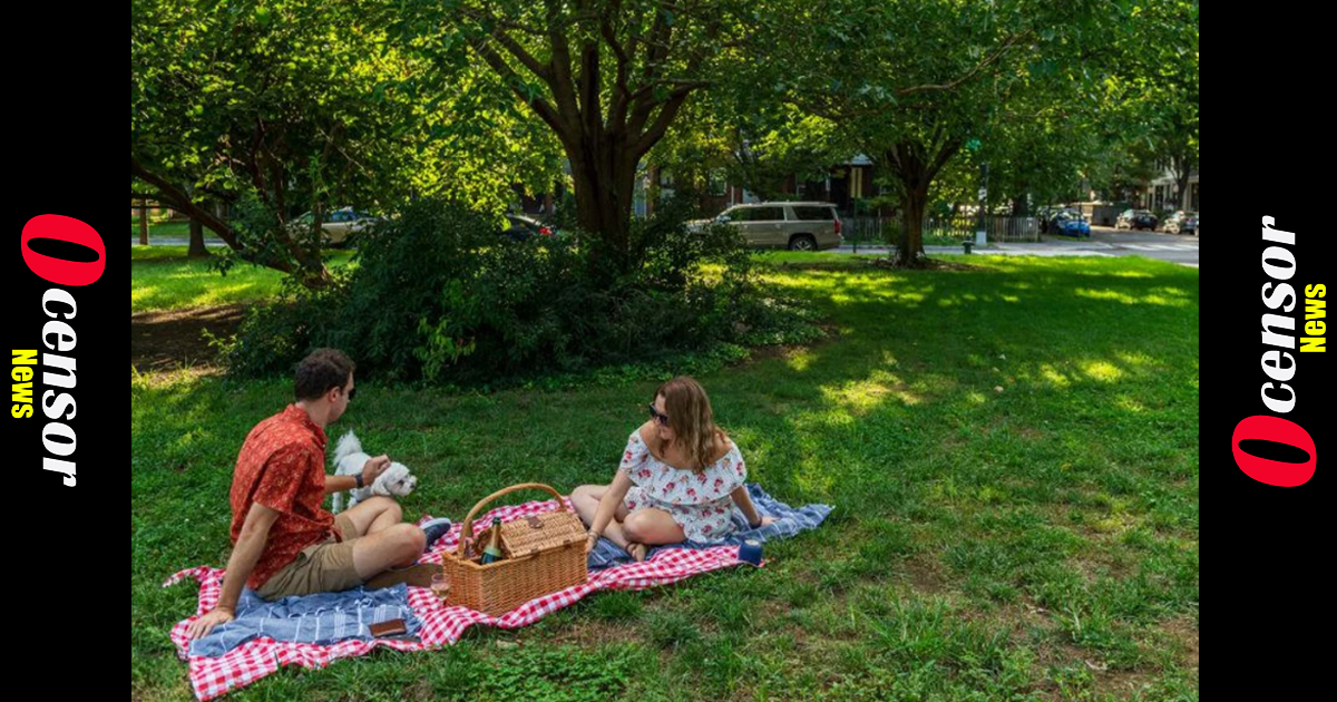 University of Michigan's 'Words Matter Task Force' says the words 'picnic' and 'brown bag' are offensive
