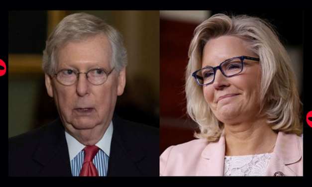 In Choosing McConnel and Liz Chenny, The Leadership of the GOP Shows How Out Of Touch They Are