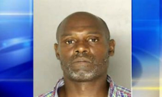 Racist Black Man Stabs 12-Year-Old Boy in the Neck at McDonald's While Ranting About 'White Devils'