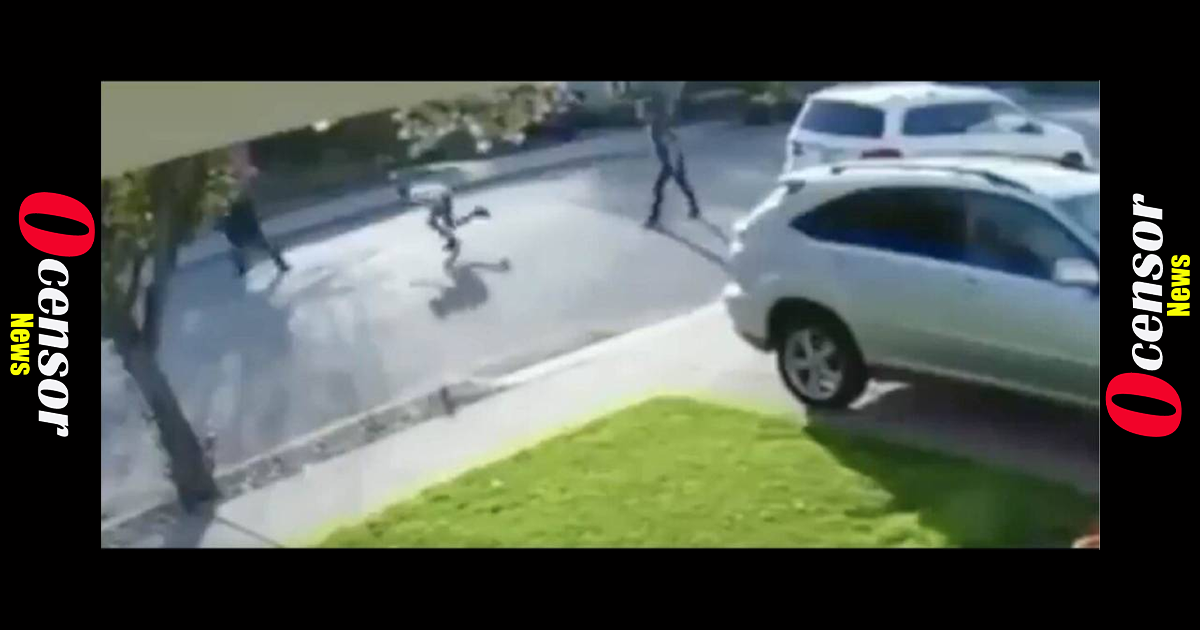 Punk Tries To Rob Citizen, Get's Body Slammed, Then Squeals Like a Pig Screaming To Be let Go When Pinned Down