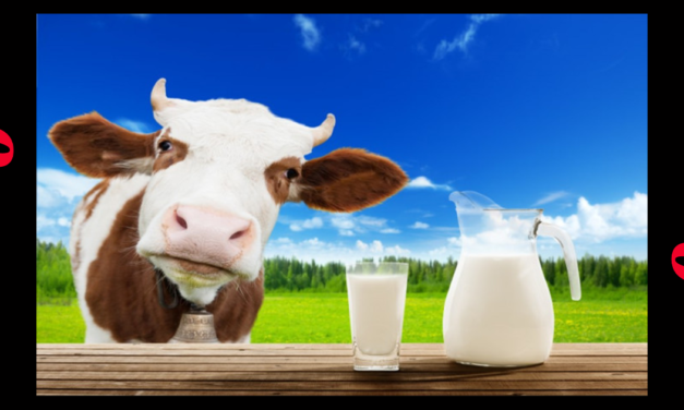 PETA Claims Cow Milk Is A Symbol Of White Supremacists
