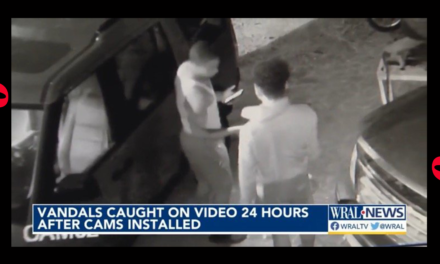 Vandals Target Black-Owned Auto Repair Shop with Racist Graffiti, Smash Up Cars – Security Footage Shows Two Black Guys