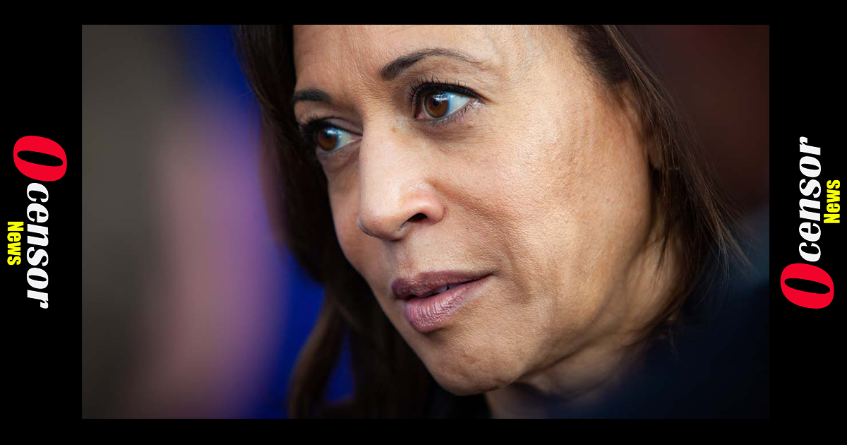 Kamala Harris Tells Activists to Knock on Doors and Harass People Who Haven't Been Vaccinated