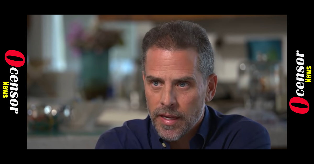 Law Professor: 'It Is Clear That Hunter Biden Was Selling Access And Influence'